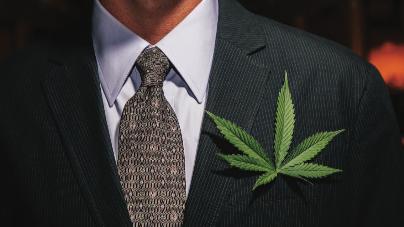Cannabis Dealmaker Summit