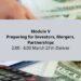 Strategy: Investors, Mergers, Partnerships